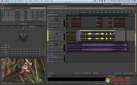 Ekran görüntüsü Adobe Audition Windows 10